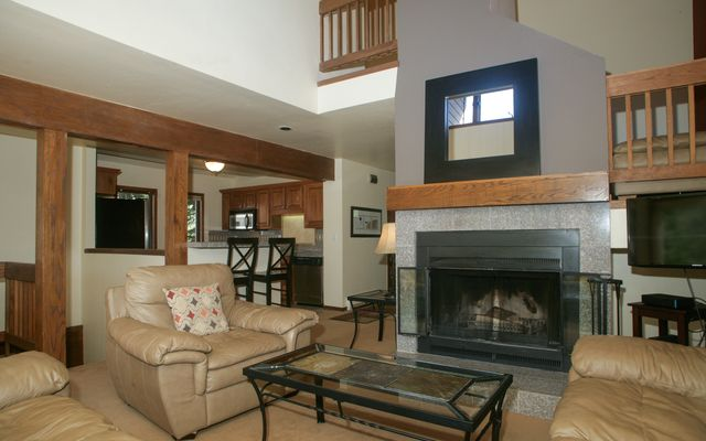 1101 Vail View Drive # C - photo 4