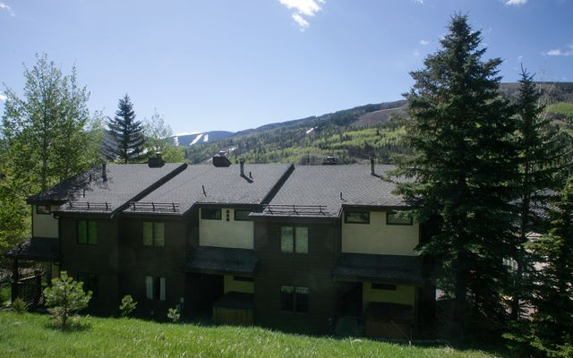 1101 Vail View Drive # C - photo 9