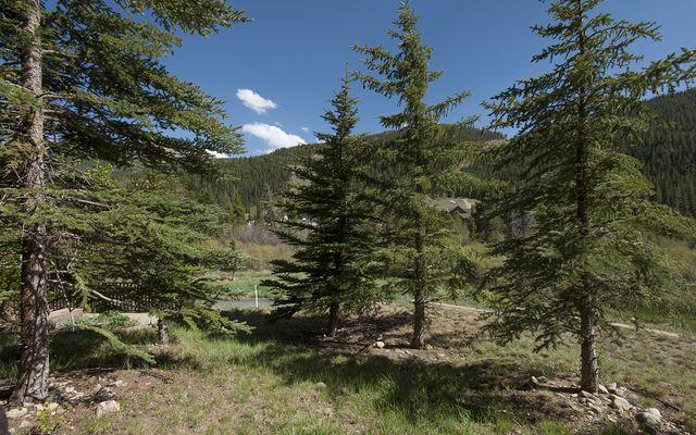 Hidden River Lodge Condo # 5941 - photo 17