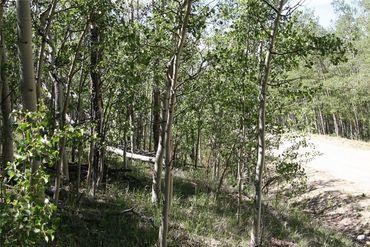 0 Ponderosa ROAD FAIRPLAY, Colorado - Image 13