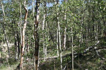 0 Ponderosa ROAD FAIRPLAY, Colorado - Image 18