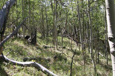 0 Ponderosa ROAD FAIRPLAY, Colorado - Image 3
