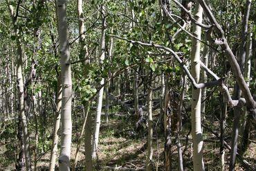 0 Ponderosa ROAD FAIRPLAY, Colorado - Image 21