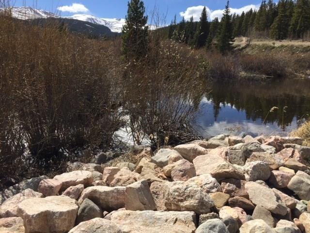 57 GOLD PAN LANE FAIRPLAY, Colorado 80440
