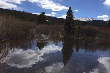 57 GOLD PAN LANE FAIRPLAY, Colorado - Image 6