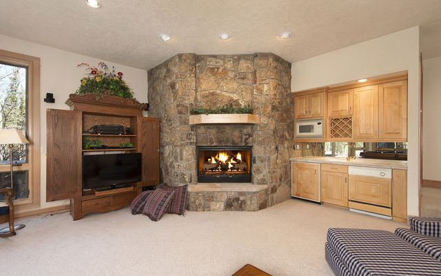 625 Spruce Valley Drive - photo 18