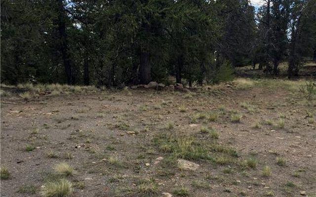 4437 Middle Fork Vista - photo 11