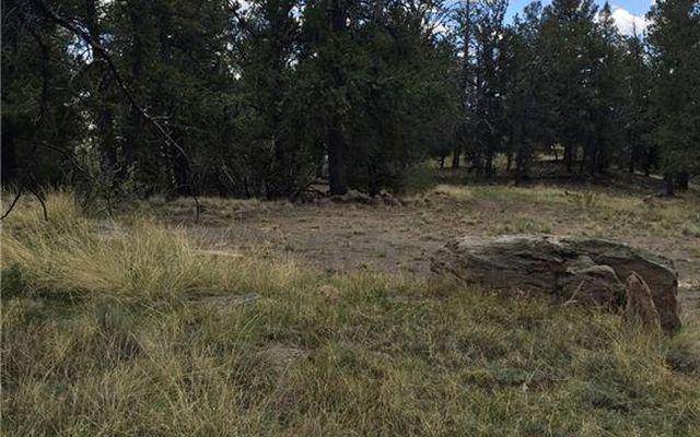 4437 Middle Fork Vista - photo 12