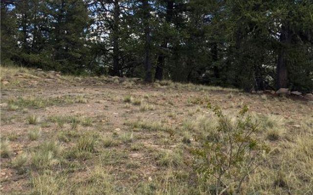 4437 Middle Fork Vista - photo 18
