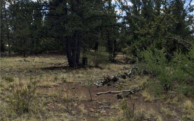 4437 Middle Fork Vista - photo 19