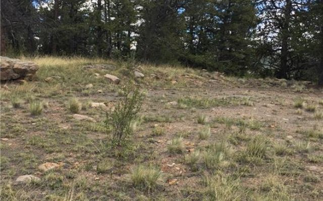 4437 Middle Fork Vista - photo 7