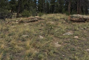 4437 Middle Fork Vista FAIRPLAY, Colorado - Image 9