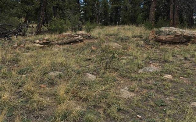 4437 Middle Fork Vista - photo 8