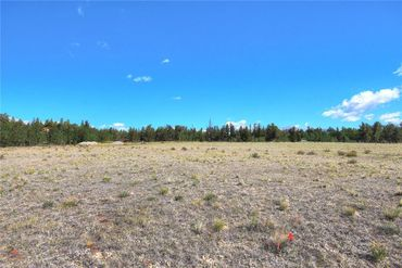 Lot 210 SANDREED DRIVE FAIRPLAY, Colorado - Image 6