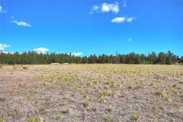 Lot 210 SANDREED DRIVE FAIRPLAY, Colorado - Image 7
