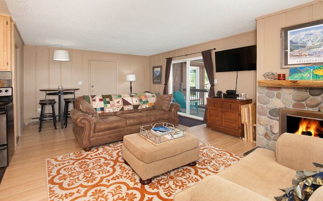 Blue River Condos (Dot Condo) # 214 - photo 1