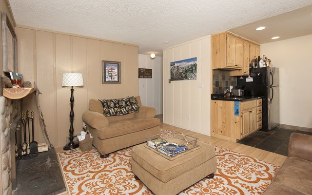 Blue River Condos (Dot Condo) # 214 - photo 3