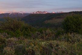 1000 Ute Forest Lane Edwards, CO 81632 - Image