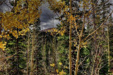 1068 Guymard ROAD FAIRPLAY, Colorado - Image 3