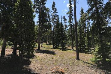 436 N Fuller Placer ROAD N BRECKENRIDGE, Colorado - Image 9