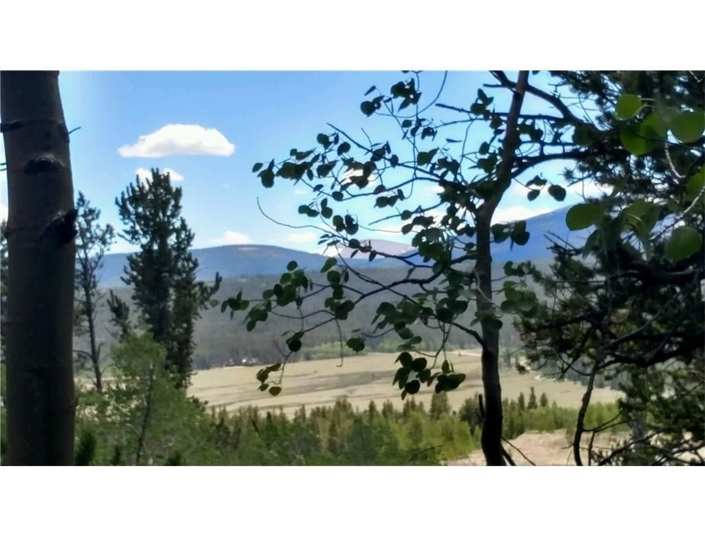 87 Juniper COURT FAIRPLAY, Colorado 80440
