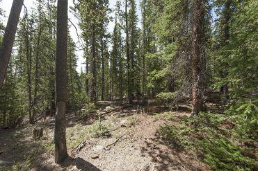 352 PUMA PLACE FAIRPLAY, Colorado 80440 - Image 1