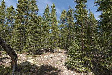 Photo of 352 PUMA PLACE FAIRPLAY, Colorado 80440 - Image 11