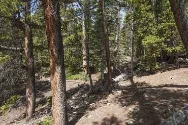 Photo of 352 PUMA PLACE FAIRPLAY, Colorado 80440 - Image 13