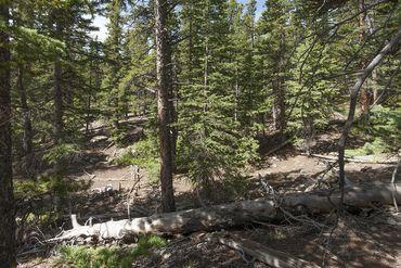Photo of 352 PUMA PLACE FAIRPLAY, Colorado 80440 - Image 14