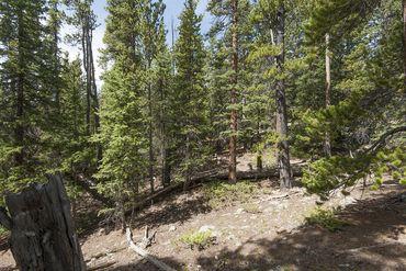 Photo of 352 PUMA PLACE FAIRPLAY, Colorado 80440 - Image 15