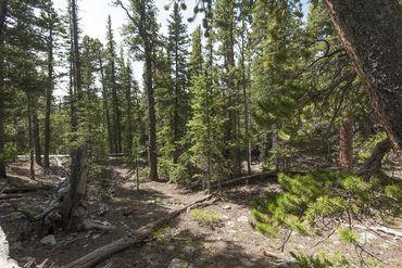 Photo of 352 PUMA PLACE FAIRPLAY, Colorado 80440 - Image 16