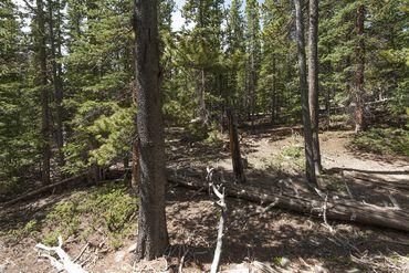 Photo of 352 PUMA PLACE FAIRPLAY, Colorado 80440 - Image 17