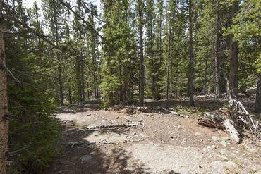 Photo of 352 PUMA PLACE FAIRPLAY, Colorado 80440 - Image 18