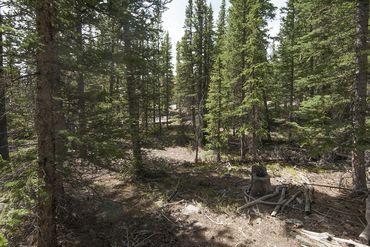 Photo of 352 PUMA PLACE FAIRPLAY, Colorado 80440 - Image 20