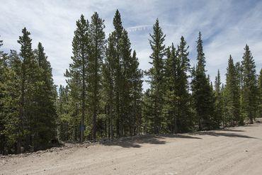 Photo of 352 PUMA PLACE FAIRPLAY, Colorado 80440 - Image 3
