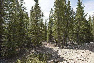 Photo of 352 PUMA PLACE FAIRPLAY, Colorado 80440 - Image 24