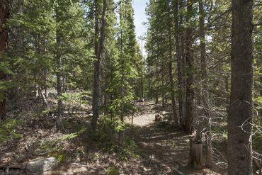 Photo of 352 PUMA PLACE FAIRPLAY, Colorado 80440 - Image 6