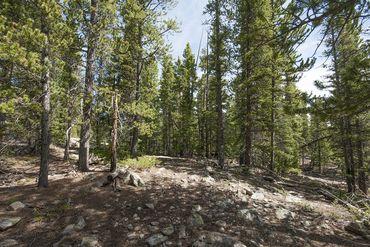 Photo of 352 PUMA PLACE FAIRPLAY, Colorado 80440 - Image 8