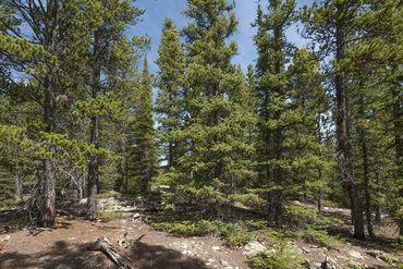 Photo of 352 PUMA PLACE FAIRPLAY, Colorado 80440 - Image 9