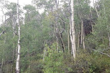 1127 QUARTZVILLE ROAD ALMA, Colorado - Image 16