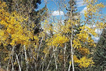 1127 QUARTZVILLE ROAD ALMA, Colorado - Image 7