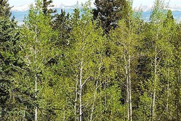 1127 QUARTZVILLE ROAD ALMA, Colorado - Image 8