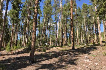65 Forest CIRCLE BRECKENRIDGE, Colorado - Image 5