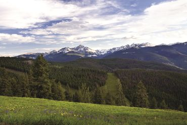 Photo of 1 Vail Road # 4102 Vail, CO 81657 - Image 16