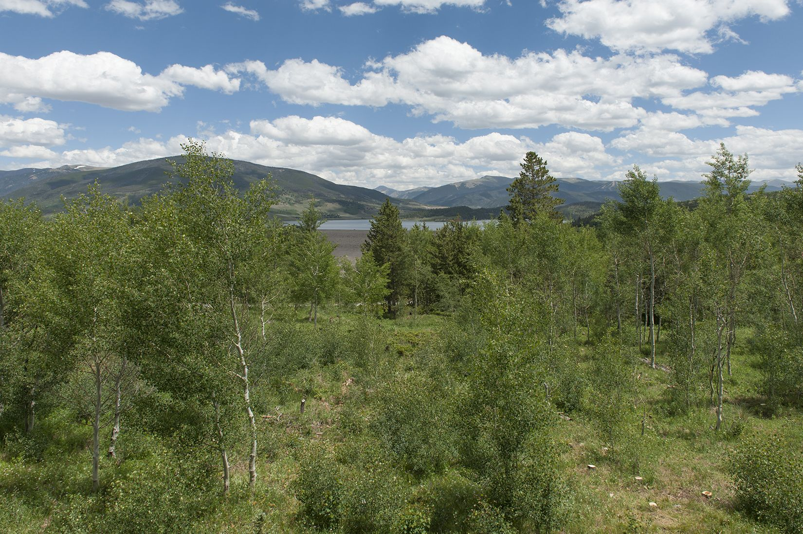 291 Lake View DRIVE SILVERTHORNE, Colorado 80498