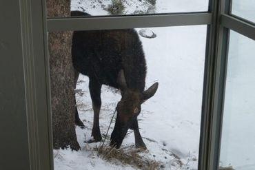 206 Elk Crossing LANE KEYSTONE, Colorado - Image 33