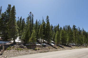 571 Kimmes LANE BRECKENRIDGE, Colorado - Image 8