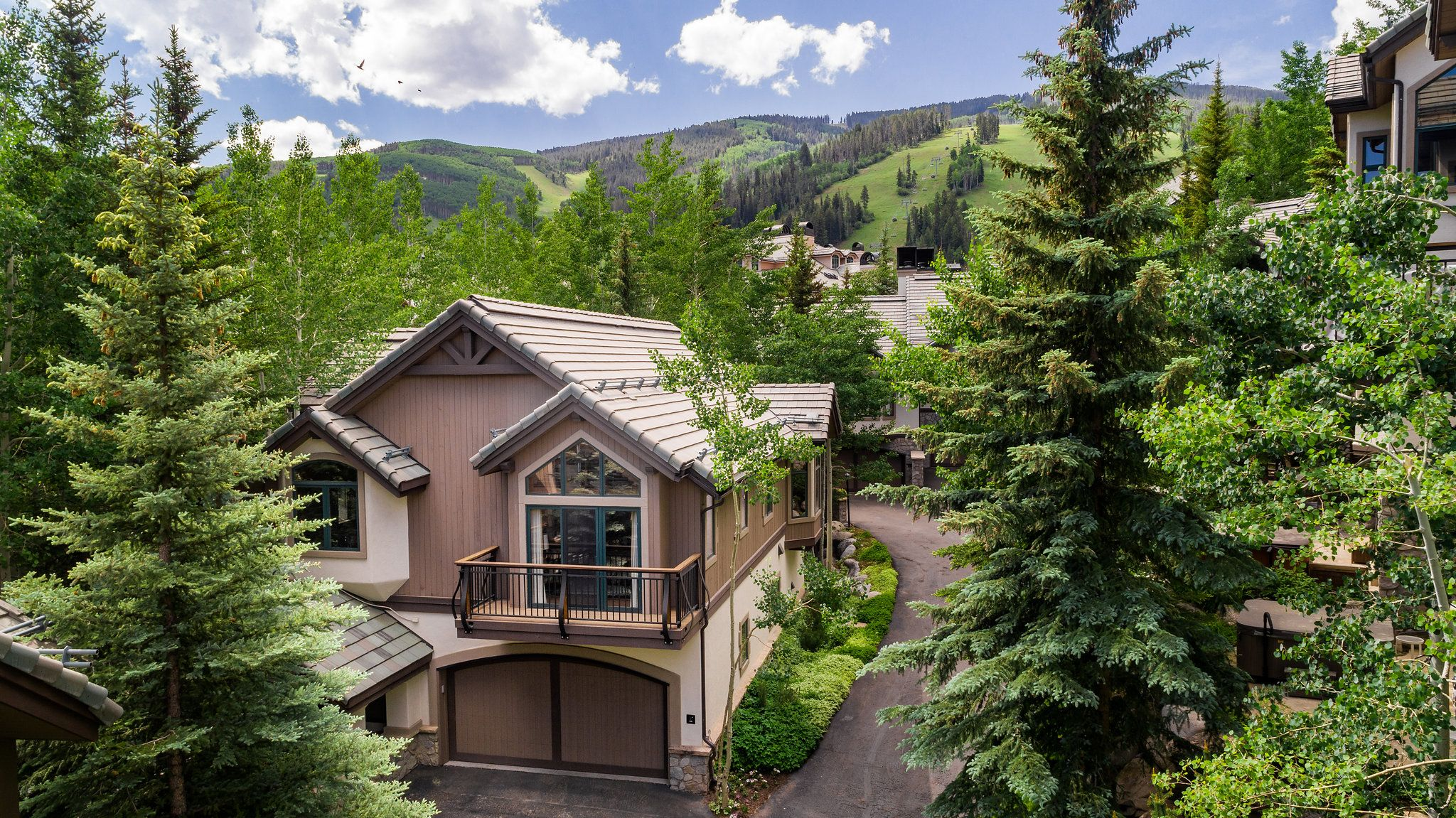 19 Larkspur Lane Beaver Creek, CO 81623