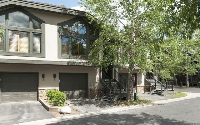 315 S Park AVENUE # 9 BRECKENRIDGE, Colorado 80424