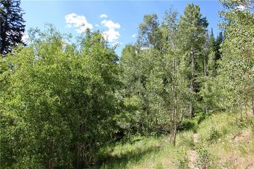 313 Raven Golf LANE SILVERTHORNE, Colorado - Image 13